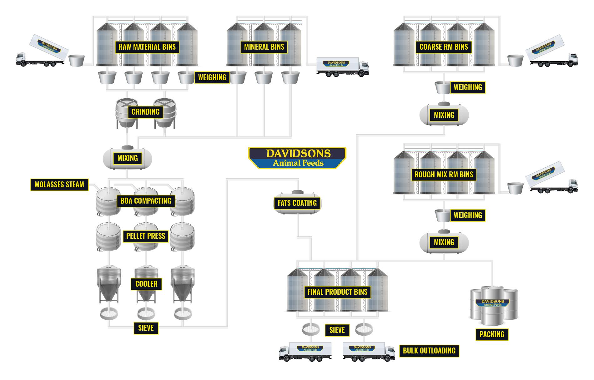 Davidsons Process Infographic