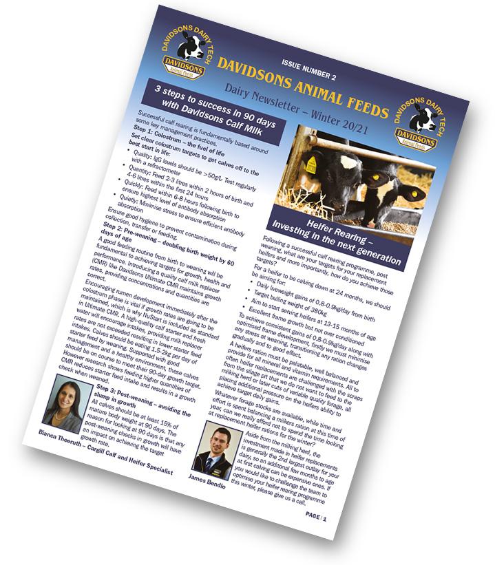 Winter Newsletter Cover