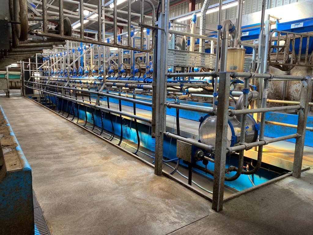 Dairy Master rapid exit parlour